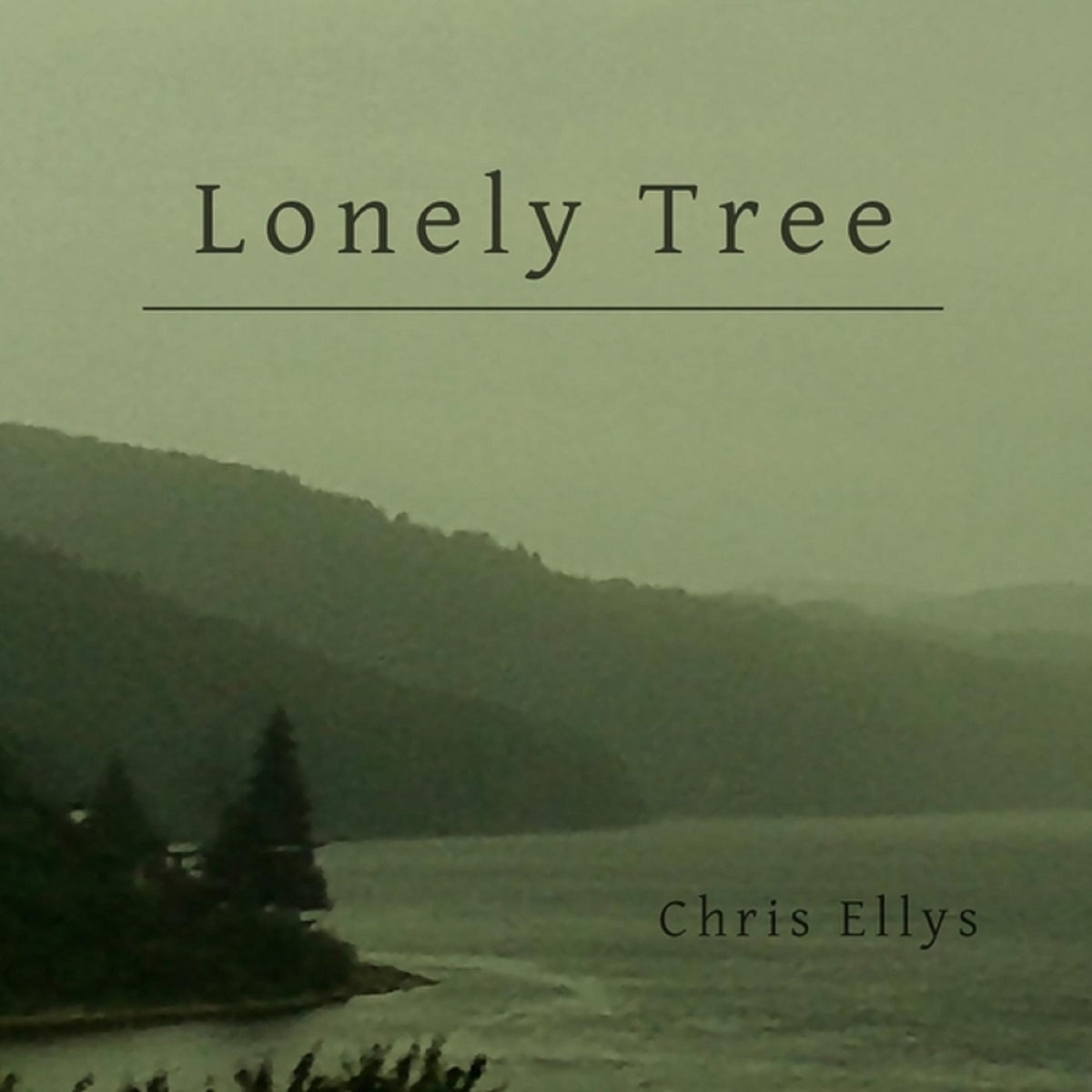 CD - Lonely Tree