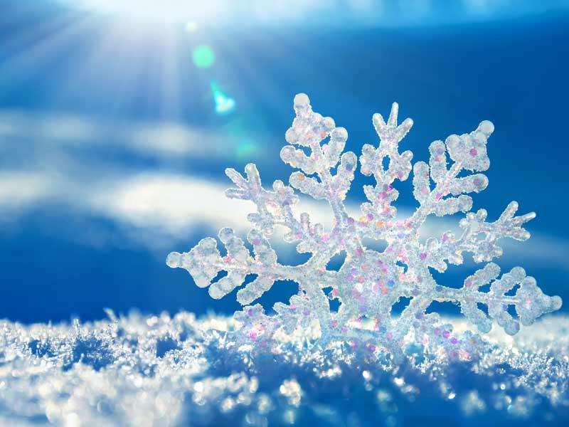 sneg-i-pahulje-seebtmjpg