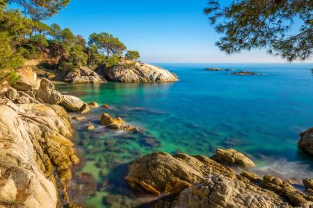 90549316-nice-detail-of-the-spanish-coast-in-costa-brava-playa-de-arojpg